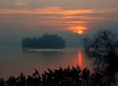 Isola dei Cipressi (marcoelli1) Tags: lago tramonto foto di co elli marco brianza pusiano dei isola cipressi eupili