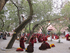 "Sera Monastery <a style=""margin-left:10px; font-size:0.8em;"" href=""http://www.flickr.com/photos/127723101@N04/21670891184/"" target=""_blank"">@flickr</a>"