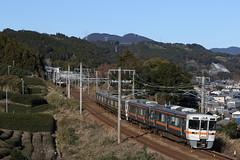 313&211  (piero-kun) Tags: japan railway jr    jr 313 211