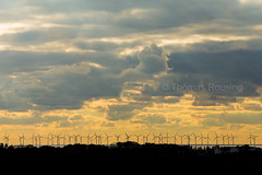 Malmö - Øresund solnedgang (Thomas Rousing Photography) Tags: architecture country fotografi malmö photography sunset sweden thomasrousing vindmøller windpower arkitektur art brotherland kunst malmø modern moderne sverige vindkraft visitmalmo visitsweden øresund editorial reklame nyhed foto turist tourist visiting besøg visit canon eos nordic