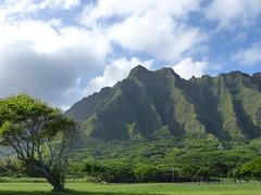 Koʻolau Range (jen-the-librarian) Tags: hawaii oahu kualoaregionalpark kāneʻohebay