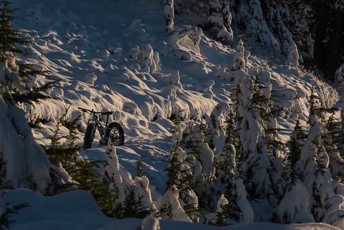 Garibaldi first snow and Paul Ridge Fat Bike ride Nov 3 2015-6
