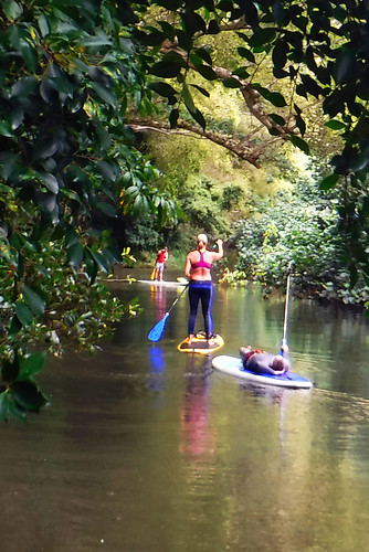 2015 Kauai Paddle Adventure  (148)