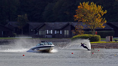 Watersports on Pine Lake (lens buddy) Tags: lake wet skiing lancashire inflatable boating waterskiing leisure canoeing watersports waterfun pinelake carnforth wetfun canoneosdigital diamondresort pinelakeresort