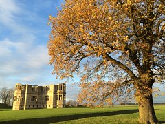 Tree and Lyveden (dark_dave25) Tags: new november cold sunny national trust sloes 2015 lyveden bield