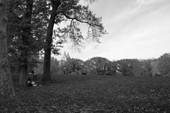 (a.cadore) Tags: nyc newyorkcity blackandwhite bw zeiss landscape centralpark candid uptown fujifilm sanremo carlzeiss xt1 biogont2828 zeissbiogon28mmf28 fujifilmxt1