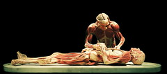 Body worlds Firenze (Gabriele Gentili) Tags: body worlds firenze bodyworlds anatomia plastination gunthervonhagens anatomie plastinate g7x piazzadisantostefano plastinato