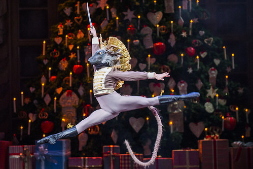 Cast change: <em>The Nutcracker</em> on 12 January 2017
