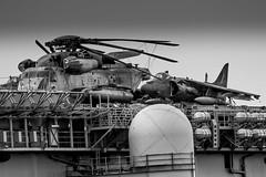 Stalliion & AV8-Harrier on the USS Essex (Rami Khanna-Prade) Tags: pearlharbor hawaii honolulu december71941 7thdecember1041 waimomi watersofpearl puʻuloa hnl phnl jointbasepearlharbor–hickam jbphh ussessex lhd2 unitedstatesnavy waspclass amphibiousassaultship mottotakenotice theirongator usn infamy 75years japanese attacks history historic remember neverforgettoday pearlharbormemorial pearlharborday america attack anniversary military vet usmc army navy airforce freedom heroes dec7 neverforget ussarizona memorial oahu visitoahu oahuhawaii pearl 1941 december7th thankyouveterans 74th