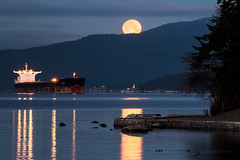 Howlin' for You 🐺🌝 Vancouver, BC (Michael Thornquist) Tags: wolfmoon fullwolfmoon fullmoon englishbay lighthousepark pointatkinson westvancouver westvan bowenisland cargoship stanleypark locarnobeach jerichobeach jerichopier vancouverphotos vancouver britishcolumbia dailyhivevan vancitybuzz vancouverisawesome veryvancouver 604now photos604 explorecanada ilovebc vancouverbc vancouvercanada vancity pacificnorthwest pnw metrovancouver gvrd canada