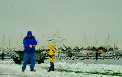 Grandpa makes his grandson a snowball (+5) (peggyhr) Tags: peggyhr marina sailboats sbow rain windshield ocean grass tellow blue snowball grandson grandpa dsc00828a vancouver bc canada thelooklevel1red infinitexposurel1 heartawards infinitexposurel2 thelooklevel2yellow afeastformyeyes