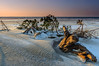 DSC_5471 (Adam Gołąbiewski) Tags: sunset hel peninsula poland pomeranian sun hitechreverse gnd cokin