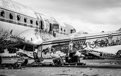 Abandoned Douglas DC-4 (DST-photography) Tags: propeller phoenix douglas dc6 aircraft old airplane plane planes airplanes wreck gila river indian native american black white chandler arizona usa glory desaturated airport airpark landing take off goodyear holiday travel people photo boeing airbus aviation flightdeck cockpit stick me rural national mono hiking travelling bw boneyard graveyard monochrome memorial pv2 lockheed dismanteled hanger terminal circle
