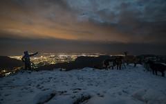 neige sur les hauteurs de Toulon (Janis-Br) Tags: neige montagne montcaume toulon var hiver animaux hauteur