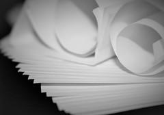 Macro Monday Paper (Spebak) Tags: macromondays macro whitepaper desaturated blackandwhite lighting spebak canon canondslr canon70d curls stacks