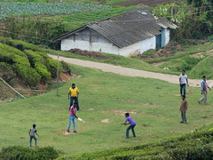 Cricket match, Yellapatty: Tea plantation trek, South India (malithewildcat) Tags: cricketmatch southindia india kerala tamilnadu tea plantation trek teaplantationtrek yellapatty