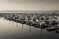 Homer Marina - Alaska (photowarrington) Tags: alaska homer marine usa us boat holiday monochrome colourless reflection abstract pleasure recreation