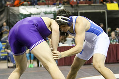 591A7894.jpg (mikehumphrey2006) Tags: 2017statewrestlingnoahpolsonsports state wrestling coach sports action pin montana polson