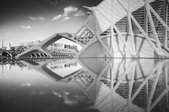 Calatrava (vulture labs) Tags: valencia calatrava workshop blackandwhite bw longexposure fineartphotography photography