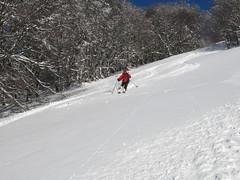 skiing segundo lomo
