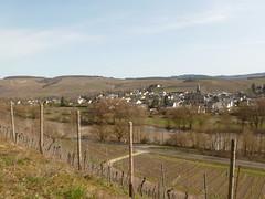 P1030136 (Unterwegs im Trierer Land) Tags: kanzem wiltingen saarbogen