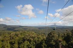 Téléphérique au dessus de la forêt tropicale