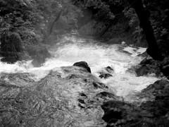 Swallow Falls (ss9679) Tags: blackandwhite white black 120 monochrome wales mediumformat river waterfall 645 hc110 falls bronica epson hp5 medium format swallow snowdonia 6x45 ilford 43 149 75mm eii afon etrs ilfordhp5400 zenza 4180 kodakhc110 llugwy zenzanon film:iso=400 film:brand=ilford film:name=ilfordhp5400 developer:brand=kodak developer:name=kodakhc110 filmdev:recipe=10681