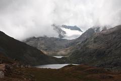 IMG_4234 (theresa.hotho) Tags: camping en france saint montagne de hiking donkey grand pic tent alpe dhuez besse anes rousses sorlin letendard stjeandarves eselwandern
