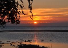 Olympos Beach sunrise (newmansm) Tags: beach sunrise turkey mediterranean trkiye turkiye olympos akdeniz olimpos