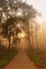 Autumn: foggy afternoon (H. Bos) Tags: autumn mist weather fog season herfst autumncolors herfstkleuren almere weer oostvaardersplassen seizoen almerebuiten oostvaarders