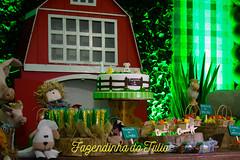 FAZENDINHA DO TULIO 2015 FINAL-20 (agencia2erres) Tags: aniversario 1 infantil festa ano fazenda fazendinha