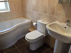 bath sink 3