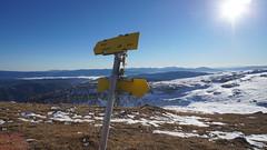 Weggabelung Hohe Veitsch; 1.800 m . Adria (joewagner5) Tags: berg wandern wegweiser veitsch