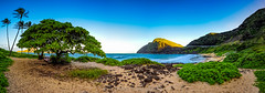 Framed Paradise (Traylor Photography) Tags: ocean sky lighthouse mountain water hawaii fishing sand rocks waves pacific oahu plumeria wide windy surfing coconuttree riptide winward makapuubeach panoarama framedparadise