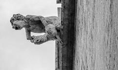 Stone Figure (2)  La Lonja (Silk Exchange) valencia (Spain) (BW) Olympus OMD EM5II & mZuiko 12-100mm f4 Pro Zoom (markdbaynham) Tags: stonework carving figure la lonja silk exchange valencia city spain espana espanol urban metropolis valencian historic olympus omd em5 em5ii csc mirrorless evil mft microfourthirds m43 m43rd micro43 zd zuikolic mz mzuiko 12100mm f4 pro zoom spainish es travelzoom mzd