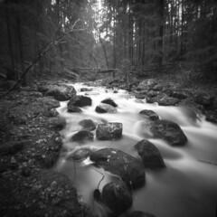 Myllypuro rapids (elfsprite) Tags: nuuksio myllypuro nationalpark brook rapids koski puro ilford fp4 ilfordfp4 vermeer vermeer66 mediumformat finland espoo neulanreik pinhole
