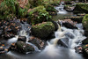 Padley Gorge 6 (21mapple) Tags: padleygorge padley gorge water waterfall waterscape landscape countryside canon750d canon canoneos750d canoneos rocks stones derbyshire peakdistrict peak district nationaltrust nt national trust outdoors outside outdoor out
