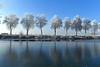 Allee (Pixelkids) Tags: winter bayern deutschland rauhreif frost weiher birken