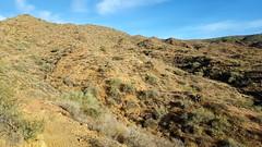 20161210_085751 (Ryan/PHX) Tags: trailrunning bct blackcanyontrail arizona desert outdoors ultrarunning aravaiparunning