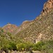 A Lone Sign Guiding the Direction and Flow In and Out of Sabino Canyon