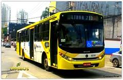 3235 Campo dos Ouros (Crisbus Brasil) Tags: crisbusbrasil ônibus bus buses caio viaçãocampodosouros guarulhos