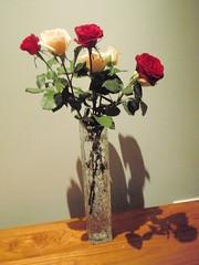 Vase of roses (benhosg) Tags: seminyak bali indonesia vase shadow flower rose