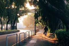 WAY TO SCHOOL (hangyh) Tags: shadow rearview back winter autumn warm hongkong man sunlight work people light