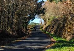Un paseo (@rgosu) Tags: paisaje arboles plantas naturaleza nature aire persona