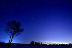 Hallbergmoos - Star Trails and Plane Trails (cnmark) Tags: münchen munich germany deutschland hallbergmoos night sky stars star trails sterne sternenhimmel polaris polarstern nature outdoors nacht nachtaufnahme noche nuit notte noite ©allrightsreserved