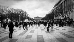 2017.01.29 No Muslim Ban Protest, Washington, DC USA 00312