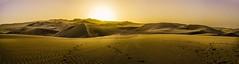 Huacachina-126 (m.lencioni3) Tags: huacachina peru perù southamerica sony a7 desert deserto dune buggy gringotrail tour travel fe35mmf28zazeisssonnart fe55mmf18zazeisssonnart konicaminolta1735mmf2845
