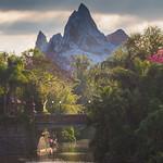 Disney's Animal Kingdom - Expedition Everest thumbnail