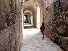 Roman Amphitheater of Italica (ldvphotos) Tags: anfiteatros anfiteatro roman turismo travel seville spain españa sevilla andalucía