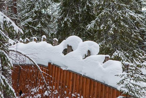 2015_02_Lapland_327